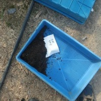 土壌検査準備