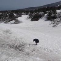 蔵王エコーラインの雪