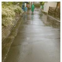雨のパレード雨でもパレード雨こそパレード