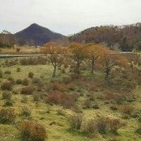 ♪‥もうひとつの秋色。(赤城山)