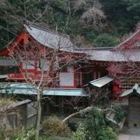 2016年2月鎌倉アルプスハイキング&江ノ島散策