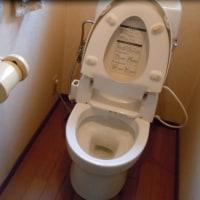 今度はトイレか・・・(тωт`)