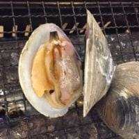 魚介類バンザイ