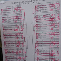 松戸ふれ愛大会 結果