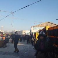 冷凍(ナラントール・ザハ)市場へ行ってきました