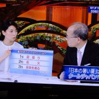 日本の暑い夏・相場・2015・2017経済 2017.05 「302」