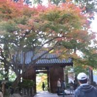 二泊三日 紅葉の旅~大興善寺①