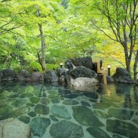ホテル湯西川予約しました。