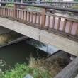 私たちの市川