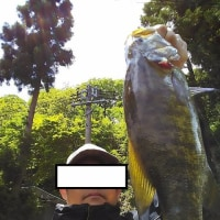 今年初めての釣行!野尻湖