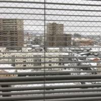 雪空 * 寒い一日になりそう ***