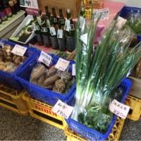 清原さんの野菜入荷ですしました