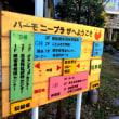 【教室】千葉 ハーモニープラザ 沖縄三線教室 お稽古!^_^