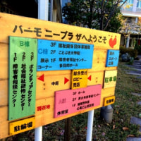 【教室】千葉ハーモニープラザ 沖縄三線教室 お稽古!(≧∀≦)