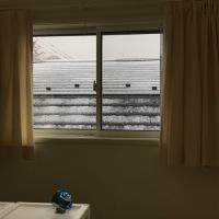 今日は初雪でした。
