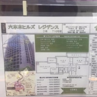 東京都 平成29年5月