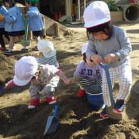 しろ 1歳児 園庭でたくさん遊んだよ!