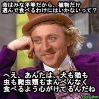 ���ޤ��ơ�(^o^)��