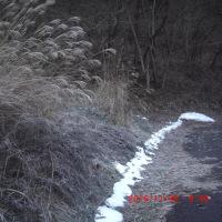 霜降るロケ地