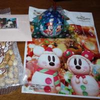 ちょっと早いクリスマスプレゼントが届きました(^◇^)