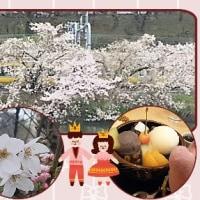 街の桜を観てきた日の事