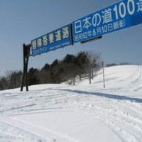 暖冬(-_-;)