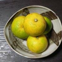 秋の味覚!!& ニューフェース