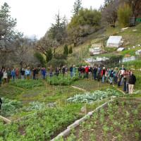 ―バイオ集約的な菜園活動―