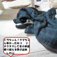 懐かしいな~昭和時代「我家・切手」(#^.^#)&ヌクヌクで風邪防止だニャ~ン😹