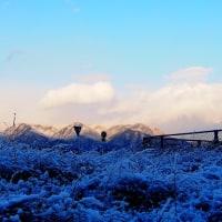 天気予報当たりです、一日雪模様でした。