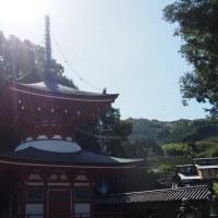 小説・紀ノ川の舞台【九度山・慈尊院】