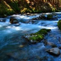 渓流「木漏れ日が舞う」久多川