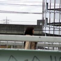 【午後の散歩】