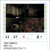 161127 起床は8時\(^o^)/