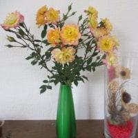 バラの花。