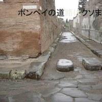 8月4日 第1回長岡京歴史よもやま話開講の段5