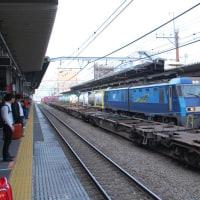 直流電気機関車 EH200-22【武蔵野線:西国分寺駅】 2016.11.20 (5)撮り鉄 車両鉄