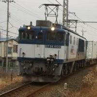 2017年1月20日  新金貨物線   EF64-1033 1094レ