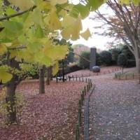 秋の美術館と静岡県工芸美術展のご案内
