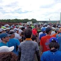 ねずみボス指令 第30回えびね京町温泉ハーフマラソンに挑戦せよ