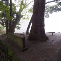 朝霧の中で・・・金鱗湖