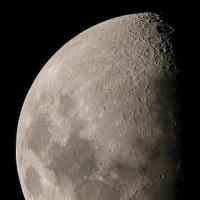 ●今夜のお月様(月齢8.8)