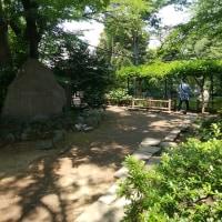 ニッポン徘徊─二十三区内最高峰