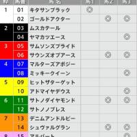 12/25【有馬記念[GⅠ]】[3連複]的中!予感