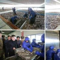 金正恩 軍の水産事業所2カ所を視察