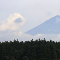 道の駅朝霧高原へ行く