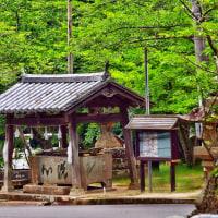 手水舎と手水の世界<賀集八幡神社>
