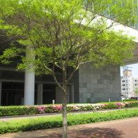 「第13回九州ハイエンドオーディオフェア」リポート(その1)