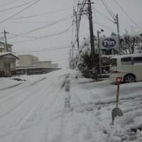 朝ローラー30分 20分 289W。 雪が降りませんねぇ・・・(´・ω・`)