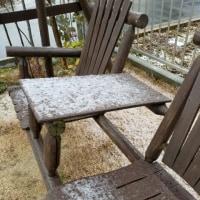 田原に雪ーーー!!⛄